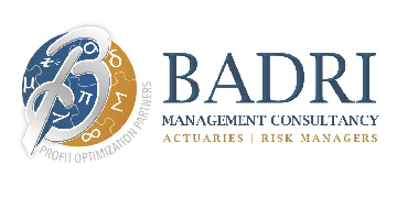 Badri Management Consultancy logo